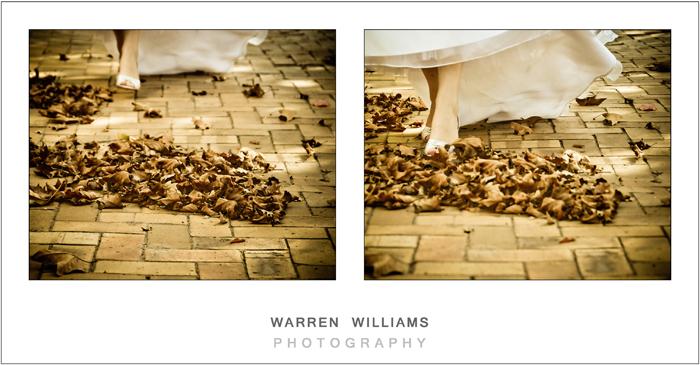Warren Williams Photography, Forrest 44 - 8