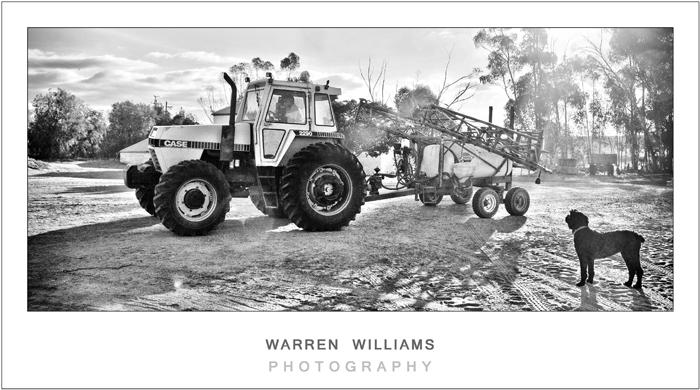 Izandi and Du Toit engagement shoot, Warren Williams Photography 32