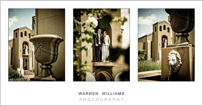 Herman and Jonel, L' Ermitage, Franschhoek weddings, Warren Williams Photography 25