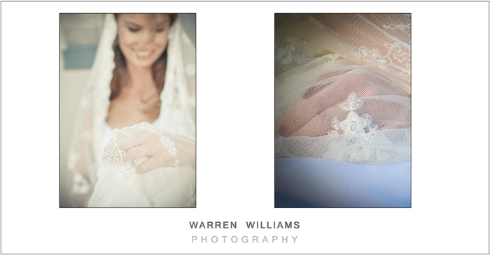 Wedding lace and veil