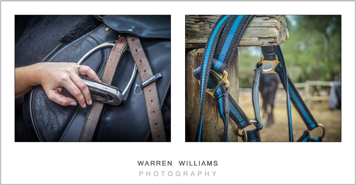 Wedding ring and bridle