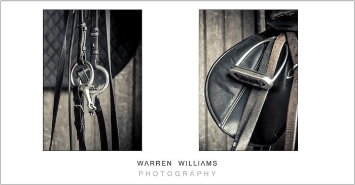 Warren Williams engagement shoot