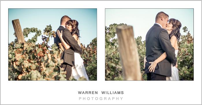 Bride and groom in vineyards