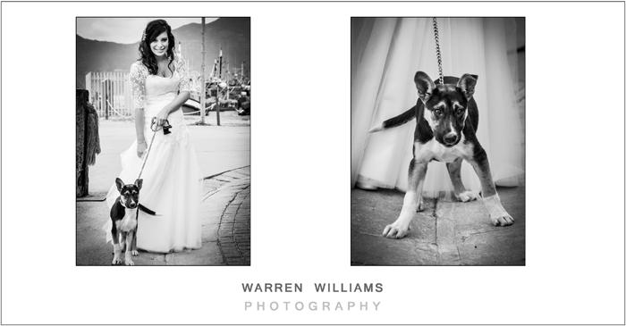Bride and puppy