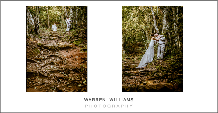 romantic moment in forest before trash the dress