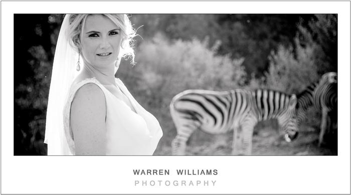 Bride with Zebra