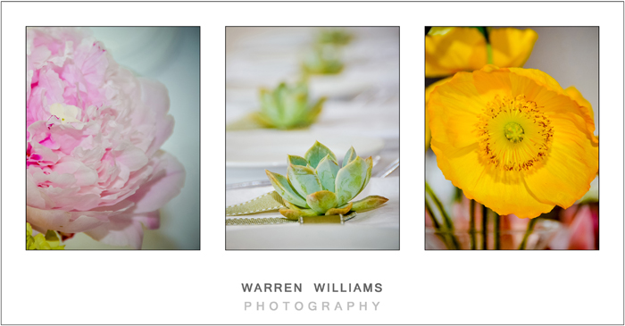 Warren Williams Photography Alle Bleue-12