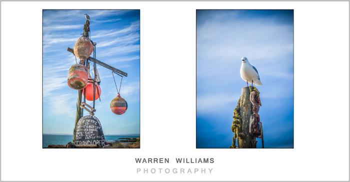 Warren Williams Photography-54