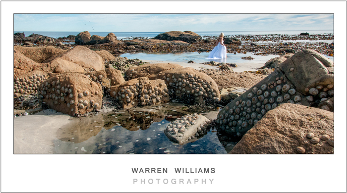 Warren Williams Photography Trash the Dress-13