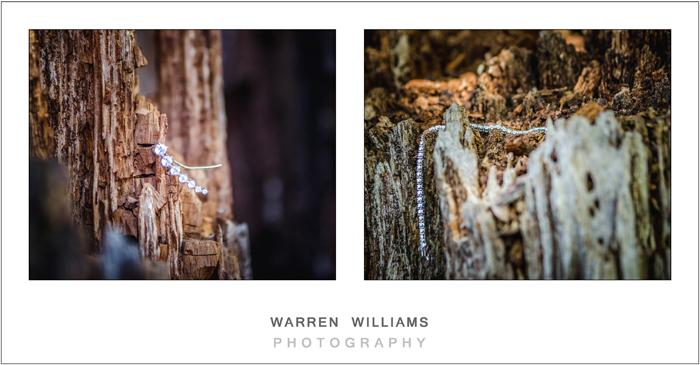 warren-williams-photography-3