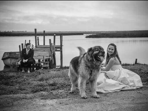 Through the lens Trash the Dress Warren Williams Photography Creative Studio